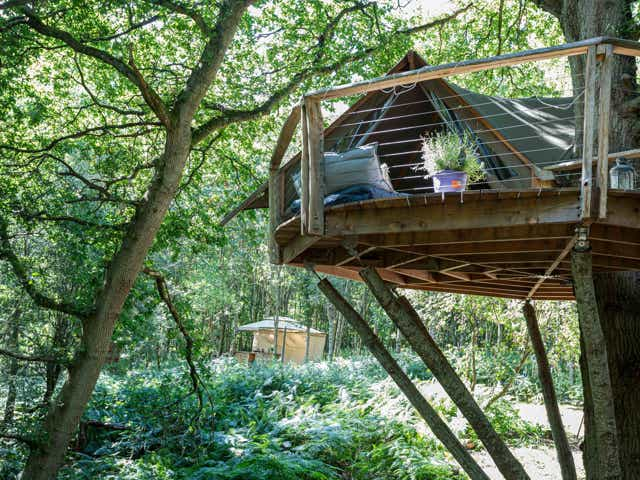 Undercover Woodland Treehouse Airbnb in West Sussex