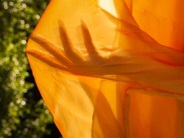 Light filtering through orange fabric shows the silhouette of a hand with long nails.