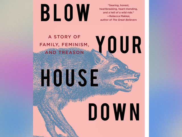 Image of the book cover for Blow Your House Down by Gina Frangello