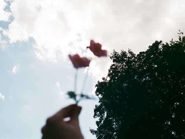 Image of a person holding up some flowers to the sky, the image is blurry to represent the different emotions that occur from dealing with grief