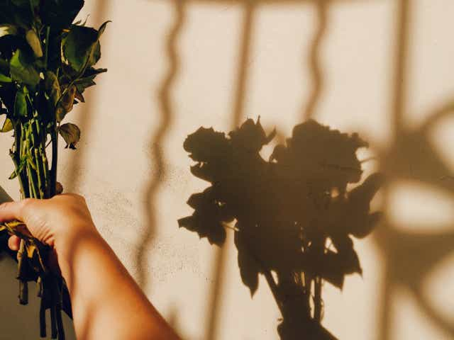 Image of a person and their silhouette holding out a bunch of flowers
