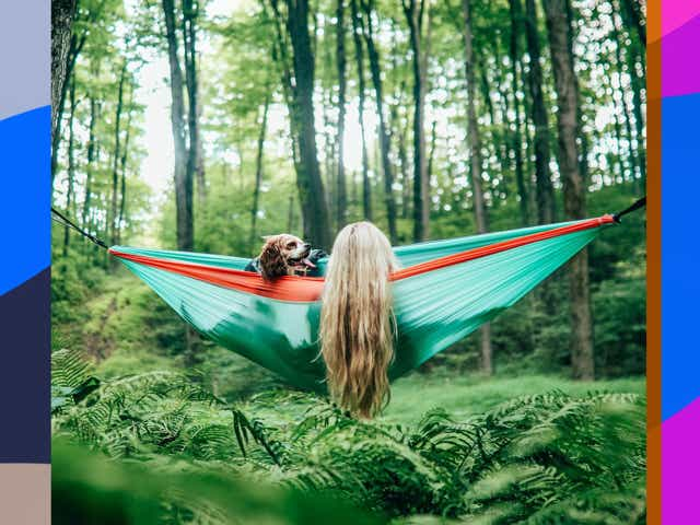 Women and dog in blue hammock hanging in the woods.
