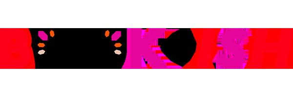 Book-ish logo