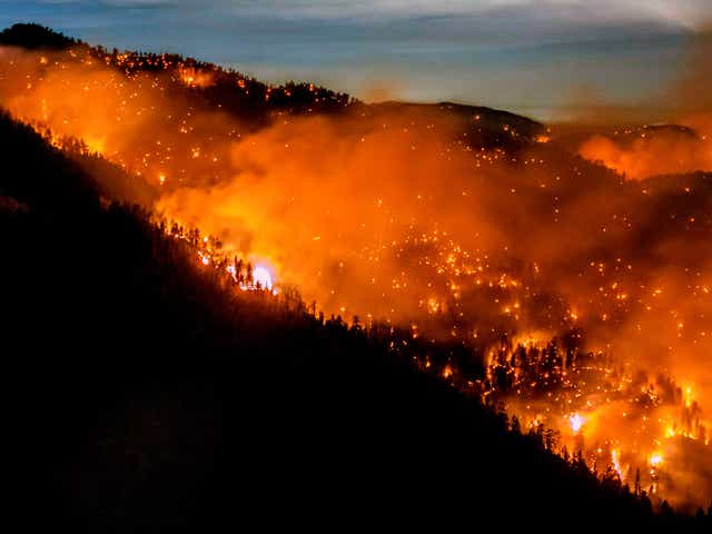 TOPSHOT - The Bobcat Fire continues to burn through the Angeles National Forest in Los Angeles County, north of Azusa, California, September 17, 2020. - California faces more devastation from wildfires that have ravaged the West Coast, authorities have warned, with strong winds and dry heat expected to whip up flames from dozens of blazes raging across the state. Governor Gavin Newsom said although firefighters had made progress in their battle to contain more than two dozen major wildfires, so-called Santa Ana winds could fuel the relentless blazes. (Photo by Kyle Grillot / AFP) (Photo by KYLE GRILLOT/AFP via Getty Images)