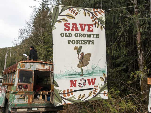 Demonstrators block a logging road near Port Renfrew, British Columbia, Canada, on Tuesday, April 6, 2021. Demonstrators at old-growth logging blockades on Vancouver Island were served with an injunction granted to forestry company Teal-Jones by the B.C. Supreme Court to remove their blockades on Tuesday morning, CTV News reports.
