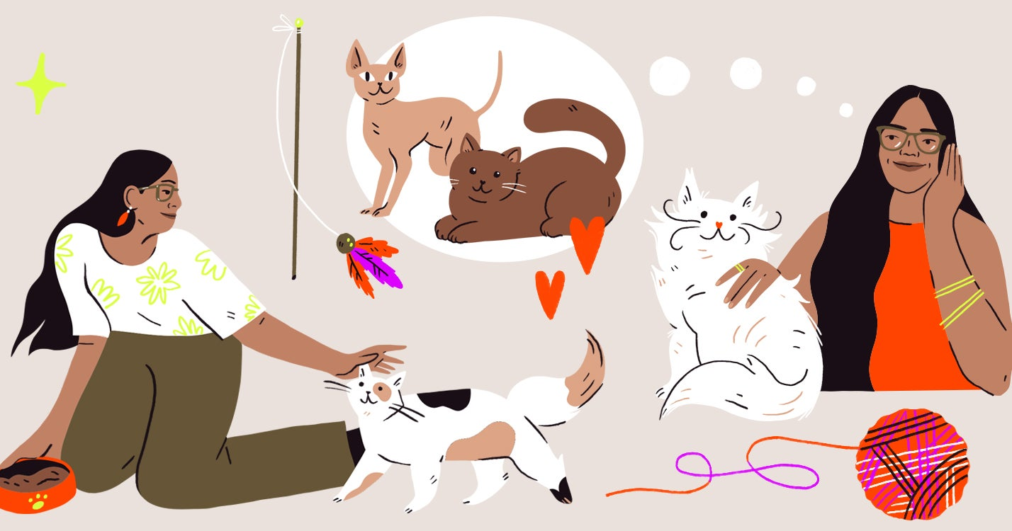 I Became a Cat Lady During the Pandemic and It's Pretty Cool, Actually