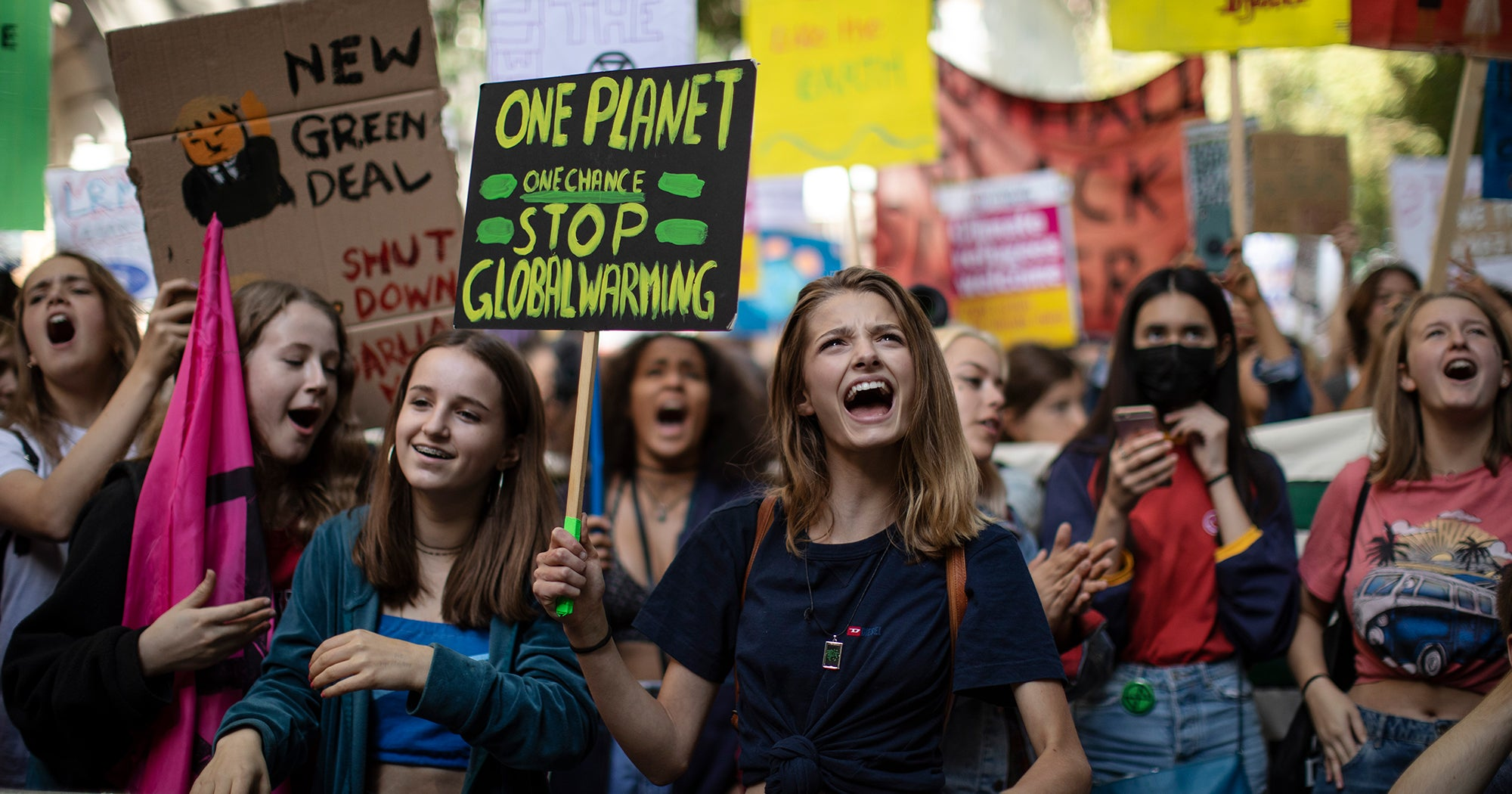 The Best Protest Signs From The 2019 Global Climate Change Strikes