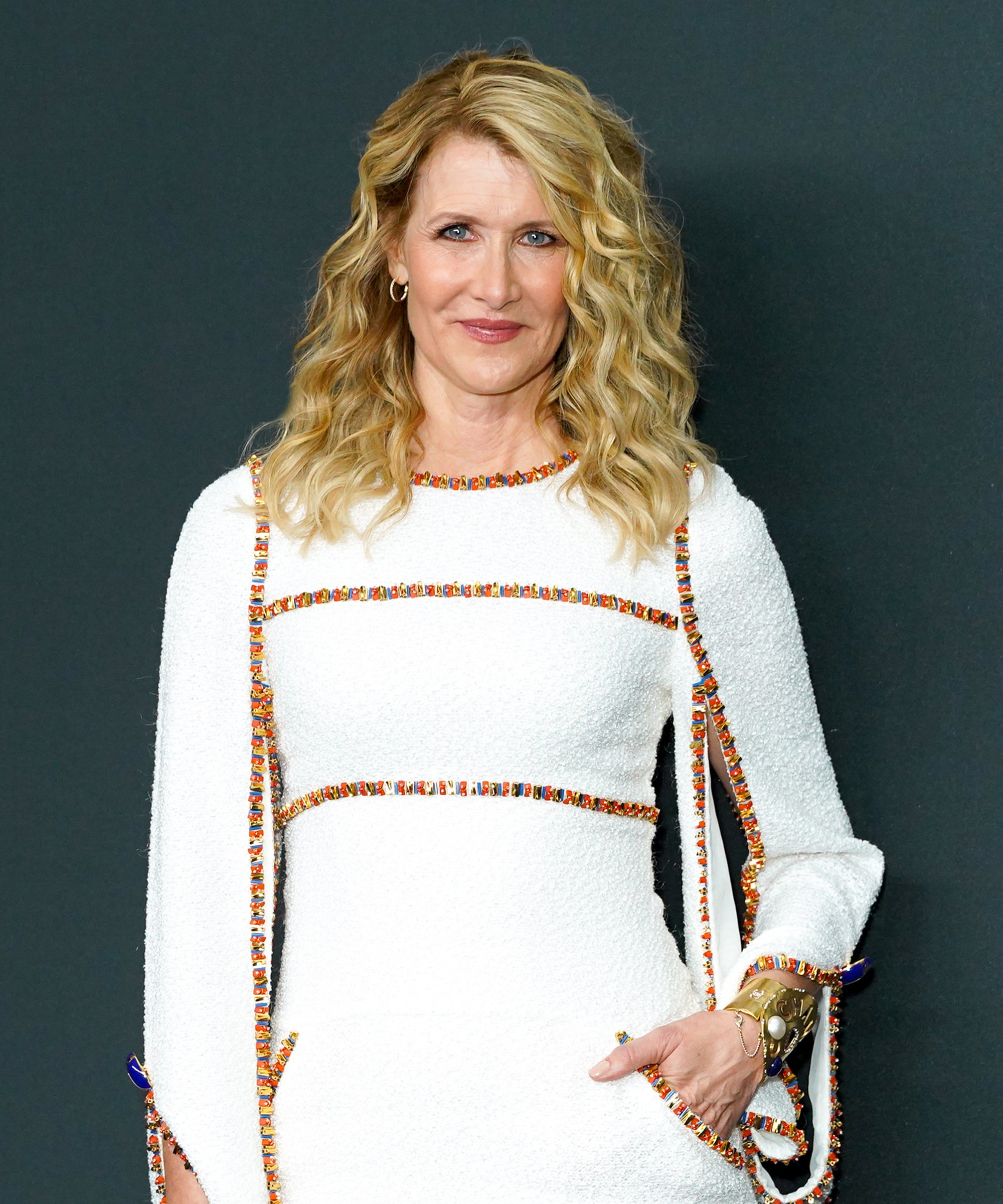 Laura Dern Does Not Know Baby Yoda Meme