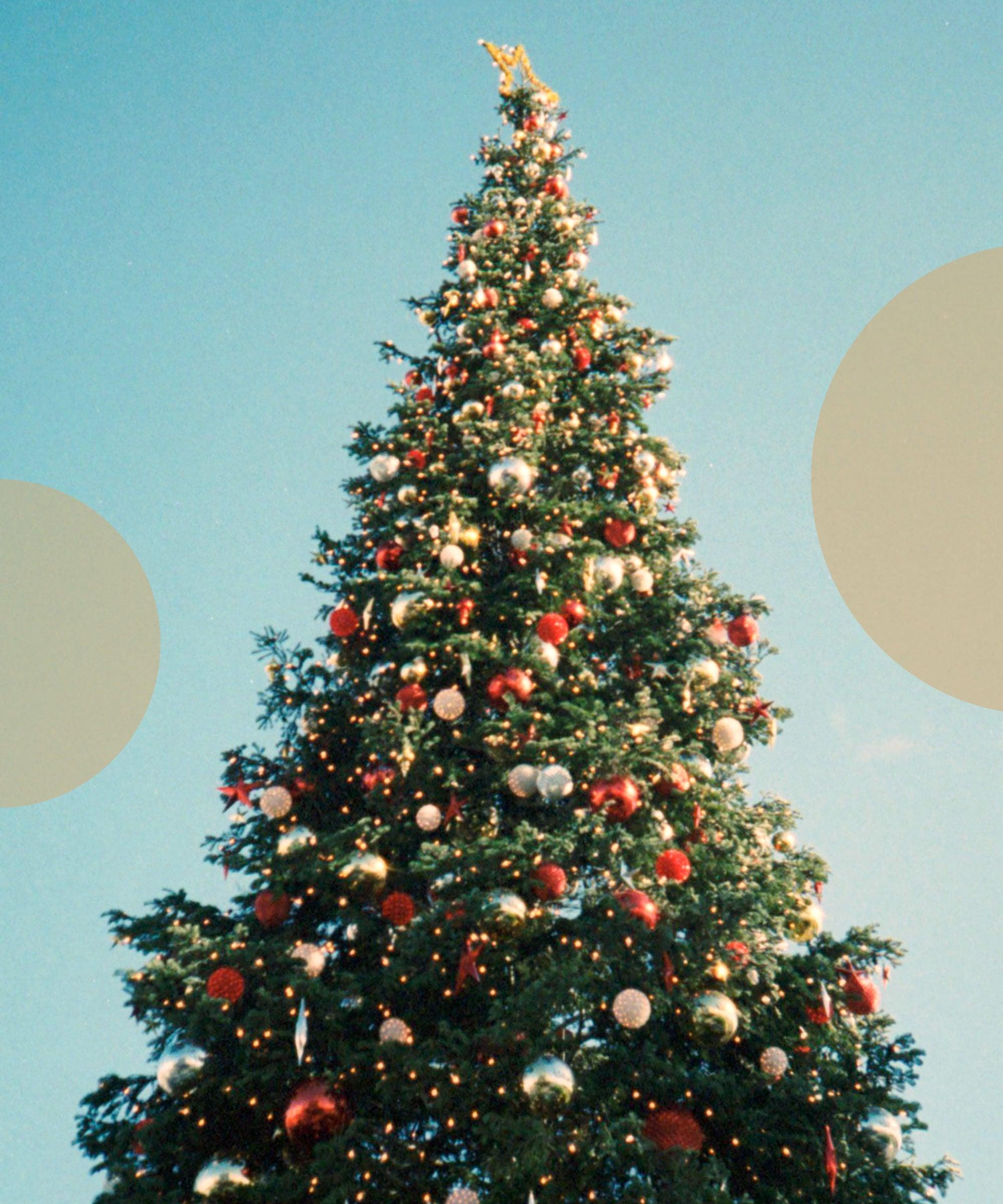 Christmas Tree Shortage 2019 Due To