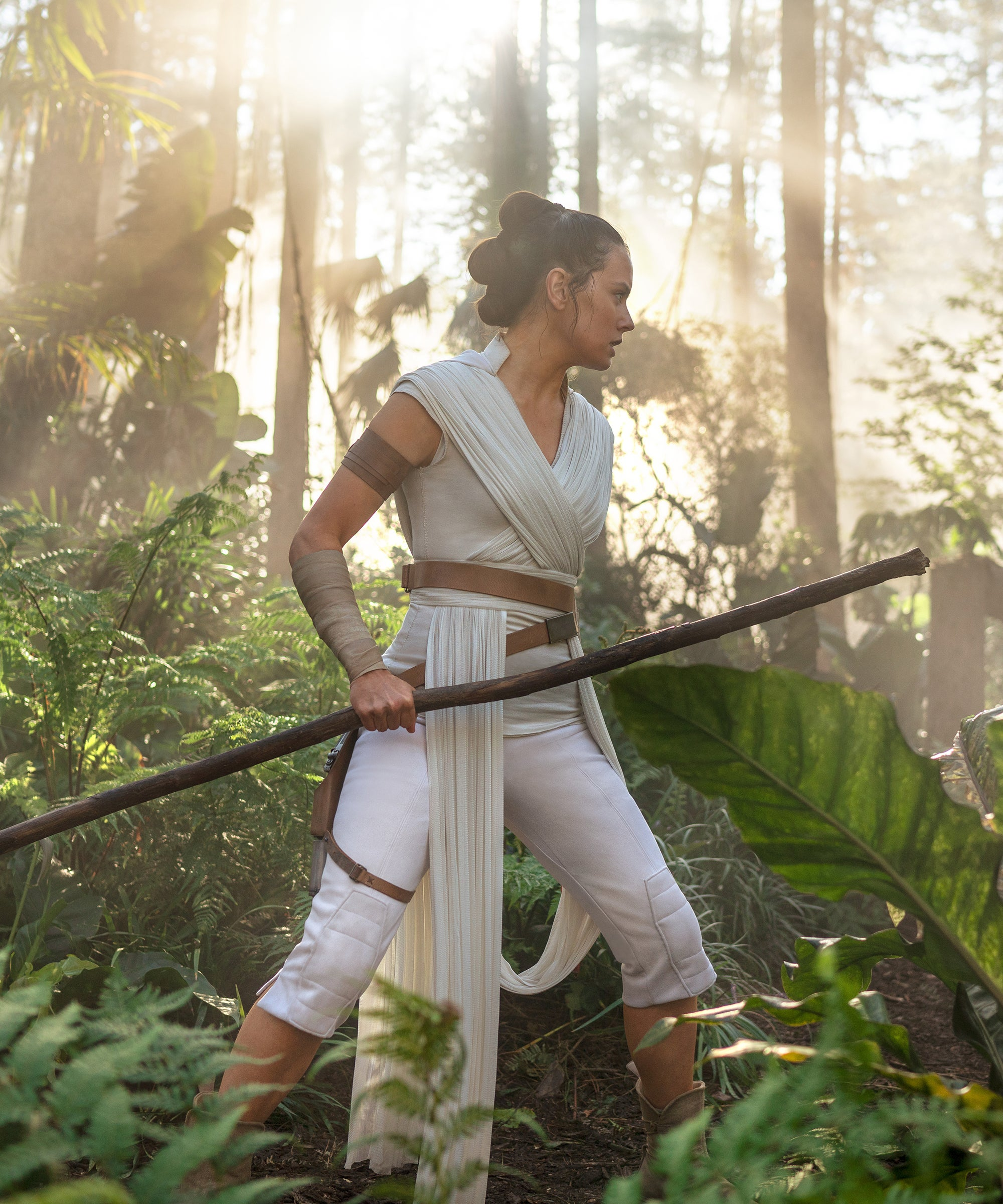 The Rise Of Skywalker Ending Is Frustrating But Works