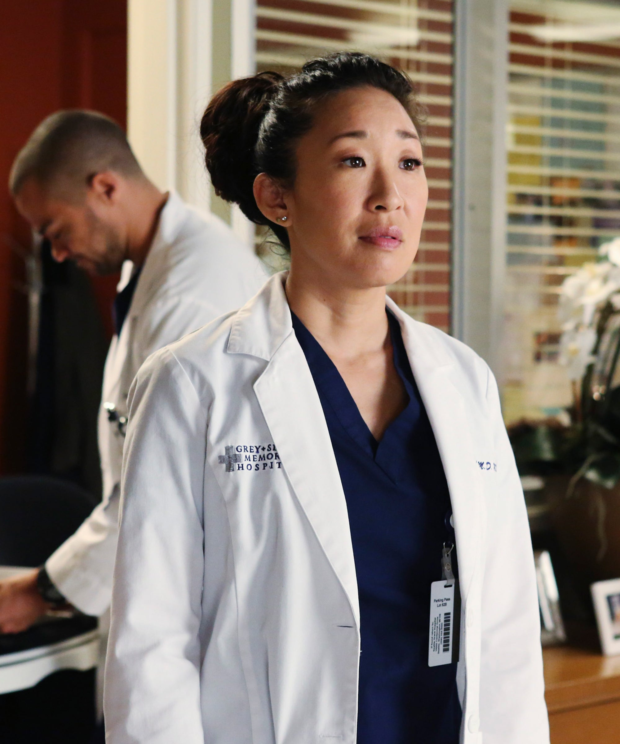Is Greys Anatomy Building Cristina Cameo For Meredith