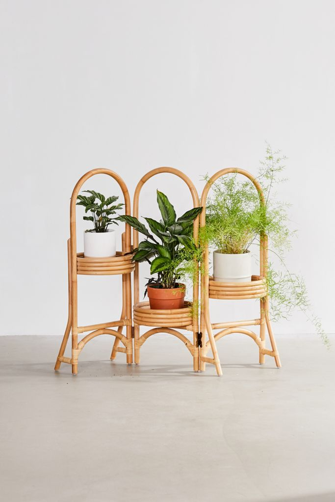 Best Indoor Plant Stands For Houseplants Of Every Size