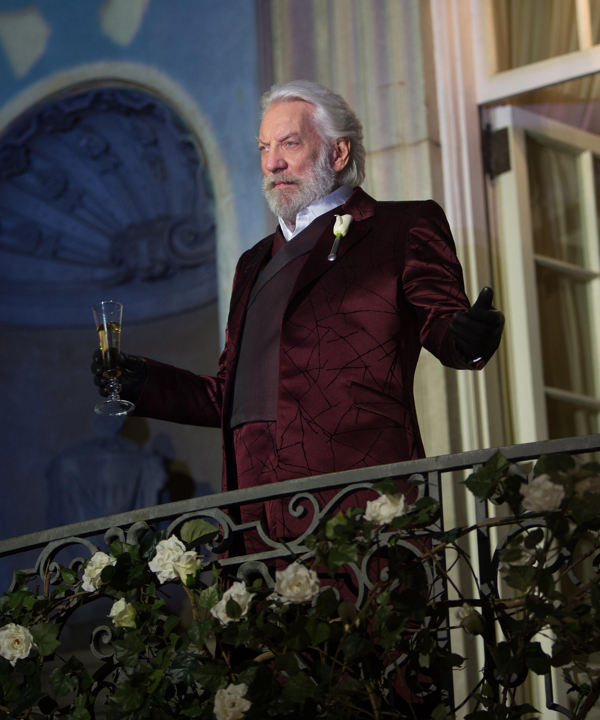 Hunger Games Prequel About President Snow Problematic