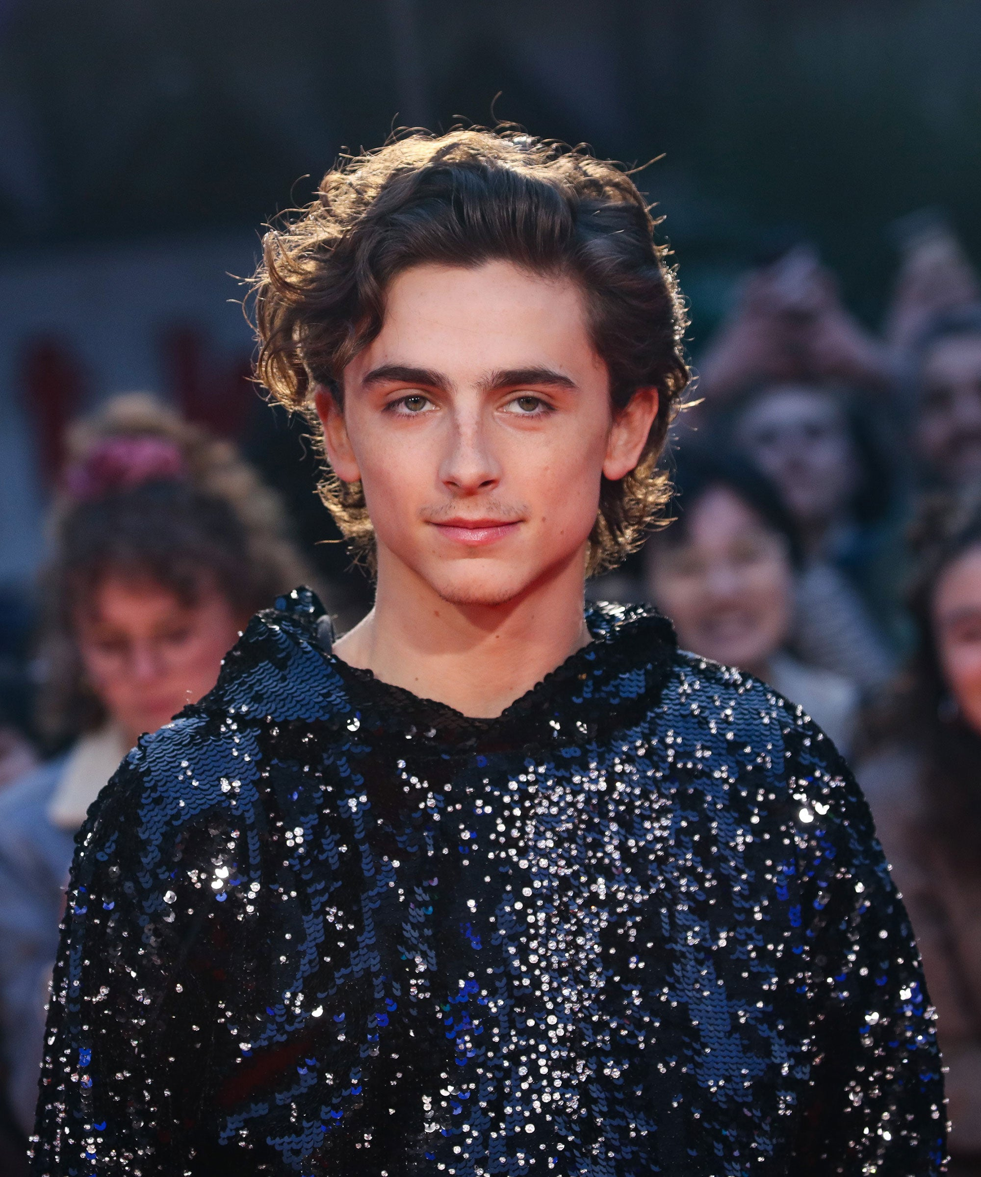 Did Timothee Chalamet And Lily Rose Depp Breakup