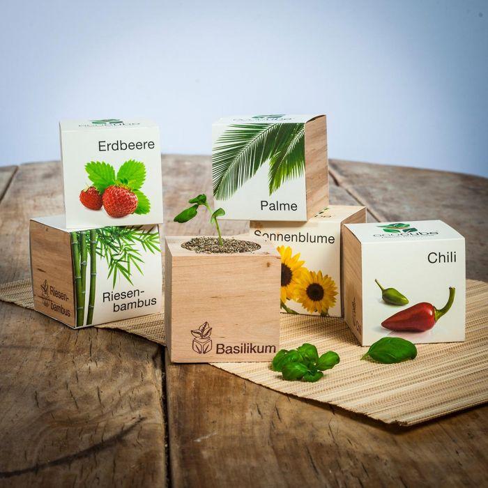 Keinen Garten? Diese 7 Produkte verwandeln jede Ecke in eine grüne Oase